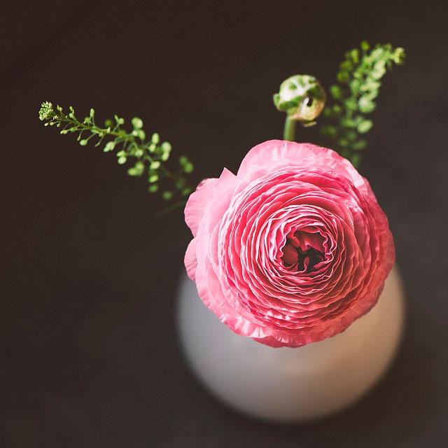 Цветок_мастер-класс